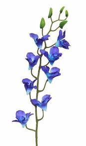Dendrobium Orchid Blue U0026 Purple Dendrobium Orchid Tropical Silk Flowers Afloral Com