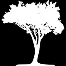 white tree 51 icon free white tree icons