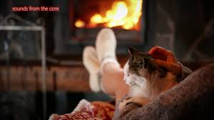 cat purring by fire sleep sounds for insomnia relaxing