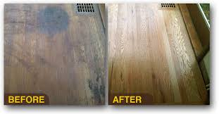 Refinished Hardwood Floors Before And After Refinish Hardwood Floors Or Replace Donatz Info