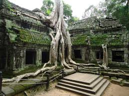 world wondering days 65 to 68 angkor temples ta prohm