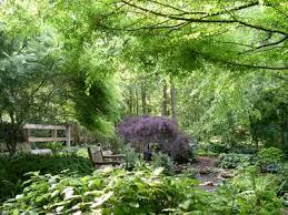 Botanical Gardens South Carolina Sc Botanical Garden Gets Largest Donation South Carolina