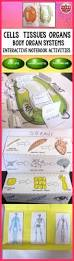 549 best science images on pinterest life science