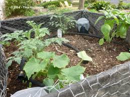 the green tower my gardener says u2026