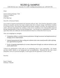 Example Of Covering Letter For Resume by Development And Software Sales Cover Letter