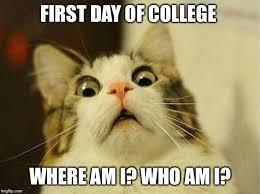 First Day Of College Meme - first day of college where am i who am i meme
