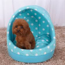 Cheap Dog Beds For Sale How To Find Cute Dog Beds Southbaynorton Interior Home