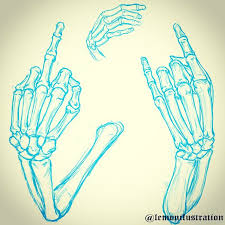 drawn tattoo skeletal hand pencil and in color drawn tattoo