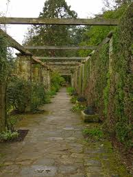 Walled Garden City Guilds by Birding For Pleasure Mount Stewart Gardens Early March