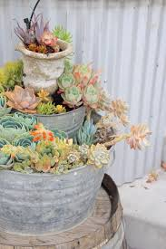 17 best images about washtub planters on pinterest four seasons