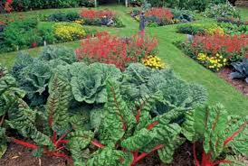 Edible Garden Ideas Eat Your Yard How To Design An Edible Landscape