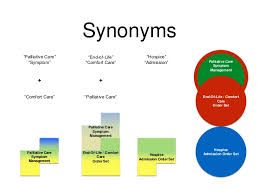Comfortability Synonyms Consolidating Improving And Novel Palliative Care Order Sets
