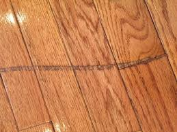scratches on hardware floors and covering