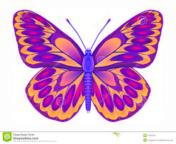 butterfly royalty free stock photos image 1615708