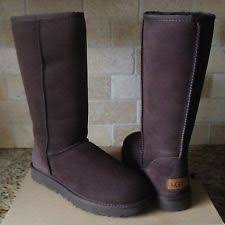 womens ugg palisade boots ugg palisade chocolate suede buckle womens boots us 11 ebay