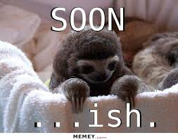 Angry Sloth Meme - animal memes that perfectly describe your sad single life cuteness