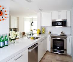 Kitchen Apartment Ideas Apartments Basement Apartment Ideas Rental Apartment Decorating