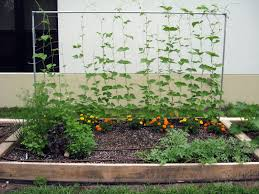 raised bed garden ideas cheap concrete beds easy to build and