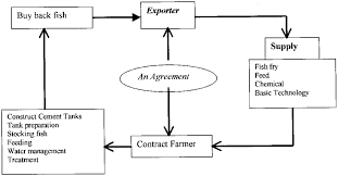 major network of ornamental fish production
