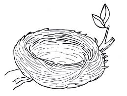 download bird nest coloring page ziho coloring