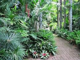 tropical landscaping ideas tropical front garden ideas australia