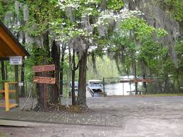 South Carolina wildlife tours images Waccamaw river tours myrtle beach boat rides on the waccamaw river JPG