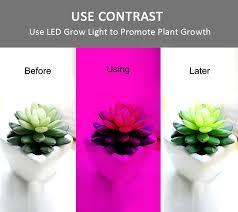 12v dc led grow lights 0 5 5m led grow lights dc 12v growing led strip light 5050 plant