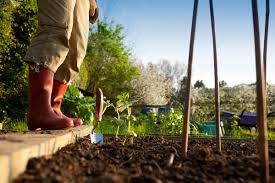 10 ways to save while gardening personal finance us news