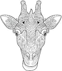 Coloring Pages Of Giraffes Giraffe Pictures To Color Animal Pages For To Color