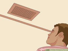 Best Way To Remove Mould From Bathroom Ceiling How To Remove Ceiling Mold With Pictures Wikihow