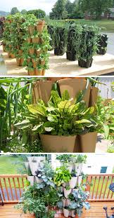 Vegetables Garden Ideas 5 Vertical Vegetable Garden Ideas For Beginners Contemporist