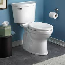 Eljer Wall Hung Toilet Champion Pro Right Height Elongated Toilet 1 28 Gpf American