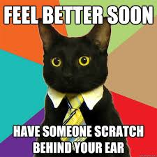 Feel Better Meme - feel better soon have someone scratch cat meme cat planet cat
