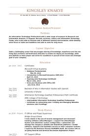 Sample Resume Information Technology by Arts Administration Sample Resume Haadyaooverbayresort Com