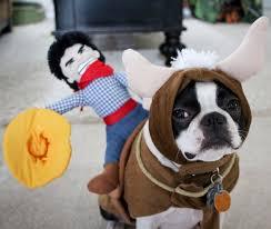 Halloween Costumes Husky Dog Pet Halloween Costumes Cowboy Bull Rider Pet Costume Pet