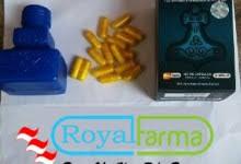 titan gel asli agen vimax asli hammer of thor asli agen obat