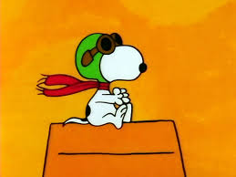 snoopy on his dog house 5 best homes to live in smosh