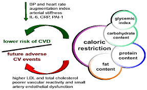 nutrients free full text caloric restriction as a strategy to