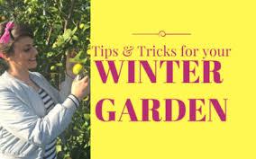 Winter Garden Jobs - edible gardening the gardenettes