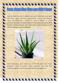 aloe vera plant facts facts about aloe vera you didn t know