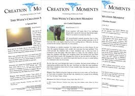 church bulletin inserts creation moments