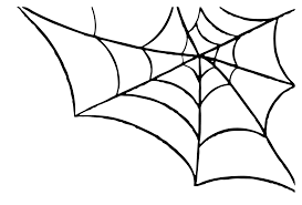 transparent halloween background spider web transparent