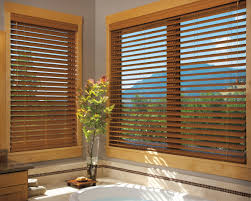 window modern bathroom with 3 day blinds and interior paint color