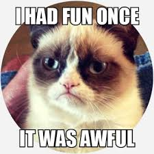 Grumpy Cat Meme I Had Fun Once - grumpy cat memes by dictionary com