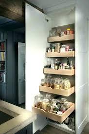 tiroir interieur placard cuisine placard de cuisine ikea tiroir coulissant meuble amenagement