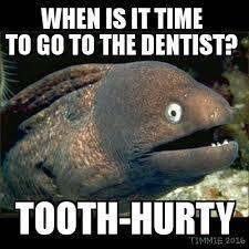 Bad Teeth Meme - eel has dental problems bad joke eel know your meme