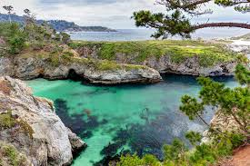 California natural attractions images 8 top rated tourist attractions in monterey planetware jpg