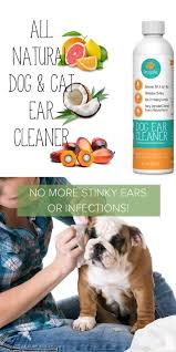 best 25 dog ear wash ideas that you will like on pinterest