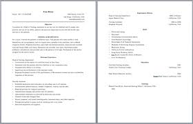 resume layout template 10 beautiful resume html templates 31 best