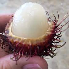 lychee fruit inside lichi fruit scary outside but beautiful inside tastes kind of